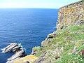Skrowa Skerry - geograph.org.uk - 490331.jpg