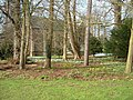 Snowdrops and Aconites, Oxburgh Hall gardens - geograph.org.uk - 1180084.jpg