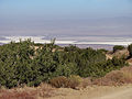 Soda Lake view from Caliente Range above Selby Campground.jpg