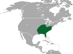 Southeastern Shrew area.png