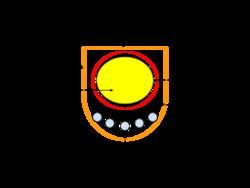 Parazita pallidum spirochete. Parazita pallidum spirochete