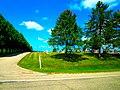 St Norbert's Cemetery - panoramio.jpg