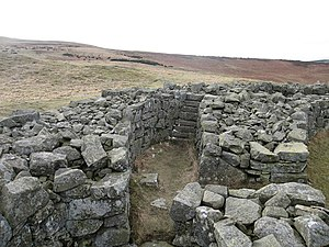 Edin's Hall Broch - Stairs in the south wall of the broch