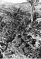 Stanowisko ciężkiego karabinu maszynowego na froncie włoskim (2-2281).jpg