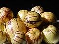 Starr-140402-0154-Solanum muricatum-fruit-Hawea Pl Olinda-Maui (25215292966).jpg