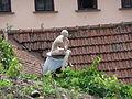 Statue, Park Studánka, Brno.jpg