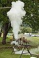 Steam Whistles 2 (6182646880).jpg