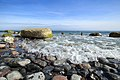 Stein an der Küste vor Rügen (Nähe Sassnitz).jpg