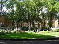 Stiftgårdsparken.JPG