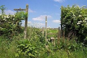 Staffordshire Way - Image: Stile on Staffordshire Way geograph.org.uk 178942
