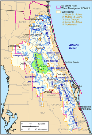 The St. Johns River lies very close to the east coast of Florida, beginning about midway down the peninsula, and winding north to Jacksonville before veering east to empty into the Atlantic Ocean. Most of its tributaries enter on its western bank and it crosses and creates many lakes.