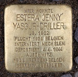 "Photo of Estera ""Jenny"" Yasgur-Driller brass plaque"