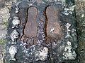 Stone craved foot prints at Panchadharla Water Jet.jpg