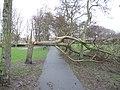 Storm 18 januari 2018 Houtwijk 1.jpg