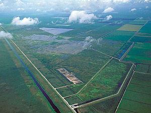 Restoration of the Everglades - Aerial view of stormwater treatment areas in the northern Everglades bordered by sugarcane fields on the right