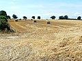 Stubble and bales - geograph.org.uk - 901877.jpg