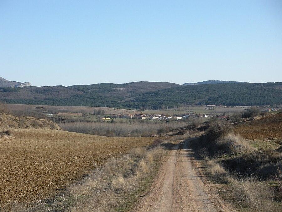 Battle of Vellica