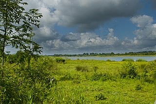 Summer Leys Local nature reserve in Northamptonshire, England