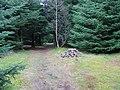 Summit, Knock of Crieff. - geograph.org.uk - 12997.jpg