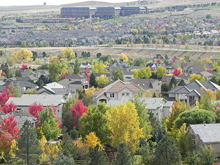 Superior, Colorado Town in Colorado, United States