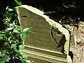 Szaleniec cmentarz 06.jpg