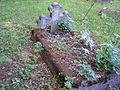 Szaleniec cmentarz 15.jpg