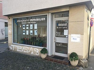 Tübingen-Springmann-Immobilien.jpg