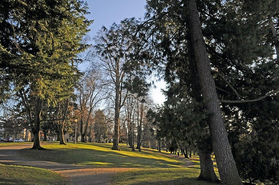 Tacoma, WA - Wright Park 01