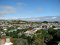 Tainui view Jan 2010.jpg