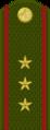 Tajikistan-Army-OR-9b.png