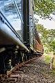Talyllyn Railway (22740304173).jpg