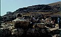 Tel Shchem - the remains of the old city 02.jpg