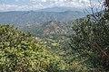 Terrace Farming in Nepal in Rakathum VDC-0367.jpg