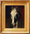 Théodore géricault, testa di cavallo bianco, 1815 ca.jpg