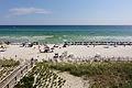 The Beach - Panama City Beach Florida.jpg