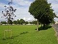 The Green, Wyke - geograph.org.uk - 41551.jpg