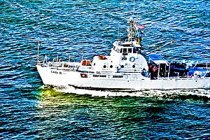 USCGC Point Brown (WPB-82362) - Image: The Lady B, formerly the USCGC Point Brown, in NYC b