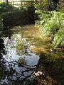 The Mill Stream - geograph.org.uk - 1543677.jpg
