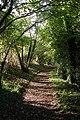 The Monarch's Way, near Hambledon - geograph.org.uk - 78177.jpg