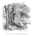 The New Forest its history and its scenery - page 090.png