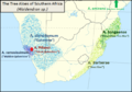 The Tree Aloes of Southern Africa - Aloidendron.png