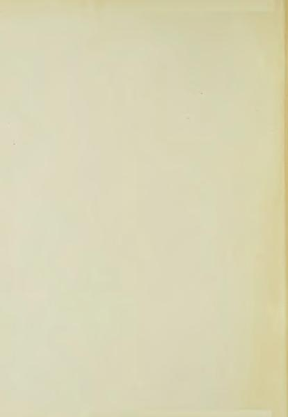 File:The Yellow Book - 06.djvu