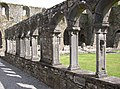 The carved cloister arches, Jerpoint Abbey, Thomastown, Co. Kilkenny - geograph.org.uk - 203260.jpg