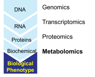 Metabolomics Scientific study of chemical processes involving metabolites