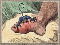 The gout james gillray.jpg