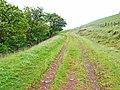 The track to Twyn Dylluan-ddu - geograph.org.uk - 190451.jpg
