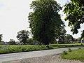 Thornton Watlass village - geograph.org.uk - 630584.jpg