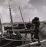 Toni Frissell, tourist photographing boats in Lisbon cph.3g12113.jpg