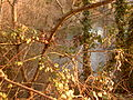 Touvre Fontaine de Lussac 04.JPG
