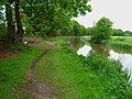 Tranquillity on the towpath - geograph.org.uk - 440943.jpg